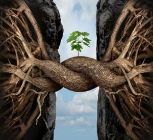 Unity and growth